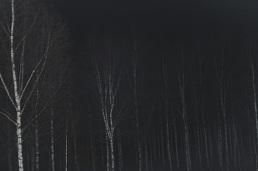 ghost-farm